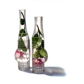 Aquarius Bouteille/Bottle
