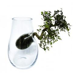 TREE Vase